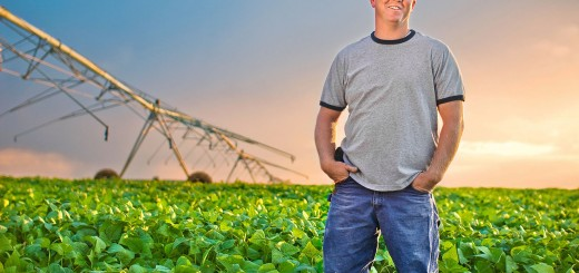 Idaho, A Farmer stands in his field of Soybeans.