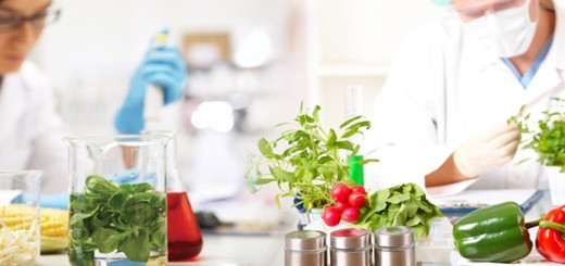 food-technology-in-germany